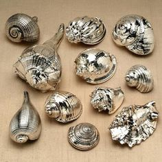 Silverplated sea shells from Ruzetti & Gow. Would be easy to recreate with chrome spray paint.