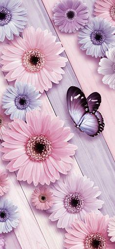 Iphone Homescreen Wallpaper, Flowery Wallpaper, Spring Wallpaper, Flower Background Wallpaper, Flower Phone Wallpaper, Cute Wallpaper For Phone, Iphone Background Wallpaper, Butterfly Wallpaper, Cellphone Wallpaper