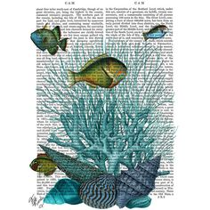 FabFunky Fish, Blue Shells & Corals Print ($44) ❤ liked on Polyvore featuring home, home decor, wall art, backgrounds, blue, blue home decor, blue home accessories, fish home decor, fish wall art and blue wall art