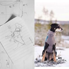 Idea to reality! A custom request for a dog sweater brought to life by kelakarclothing.etsy.com. #custommade #dogwear #dogsweater #erdelyikopo #transylvanianhound #houndsofinstagram #hikingwithdogs #sewingfordogs #patterndesign #pattern #patternmaking #dogclothes #dogclothing #dogclothingdesigner