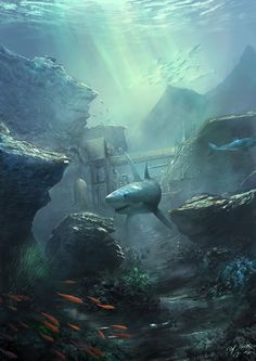 Ocean And Under by Frank Hong