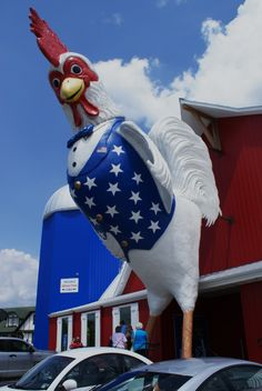 The great american steak and chicken house in Branson..I know this chicken, because he lives next to Krispy Kreme, haha! Branson must be so interesting to people who aren't from around here.