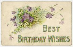 Antique Birthday Greetings Postcard Purple Flowers White Lily of The Valley 1908 | eBay