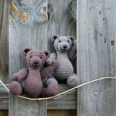 Joseph Bear Twins