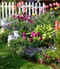 Von dieser Ecke im Garten hab ich noch nie......... - Bilder und Fotos