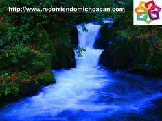 MICHOACÁN MÁGICO dice que en Uruapan puedes visitar el Parque Nacional Barranca del Cupatitzio, que debe su nombre a que en este parque nace el río con el mismo nombre, el río nace en una fosa de 3m. de profundidad denominado la rodilla del diablo y sigue su camino serpenteando por todo el parque, además del río aquí encontraras una gran variedad de vegetación. HOTEL FLORENCIA REGENCY http://www.florenciaregency.mx/