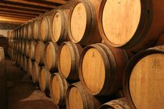 All about Barrels: Why and How They Enhance Wine