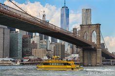Excursiones Nueva York Tour Water Taxi rios Brooklyn Bridge East River, World Trade Center, Empire State Building, Washington Dc, Hudson Yards, Skyline, Manhattan New York, Group Tours, New York Travel
