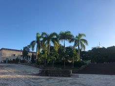 Zona Colonial, Beach, Water, Plants, Outdoor, Gripe Water, Outdoors, The Beach, Beaches