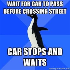 Socially Awkward Penguin bahahahaha I get this at least once every day! You Funny, Hilarious, Funny Stuff, Funny Things, Socially Awkward Penguin, Anxiety Cat, Social Anxiety, Awkward Moments, Embarrassing Moments