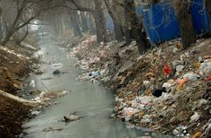 Trash clogs up a polluted canal at the edge of Beijing, China. (AP)