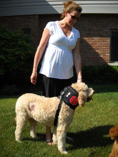 This product is the absolute best. My 76 lb  goldendoodle had surgery  resulting in sutures on her head &  side.  The standard lampshade  was prohibiting her from sleeping comfortably as well as drinking or eating.  She would constantly whimper whenever it was on her.  Upon taking it off she would instantly try to scratch & lick the sutures so I had to keep it on as much as possible.  She was depressed, lacking sleep and refused to eat or go to the bathroom if the e collar was on her.  Lisa