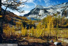 Enchantments, Alpine Lakes Wilderness | Enchantment Lakes, Alpine Lakes Wilderness Area: Little Annapurna ...