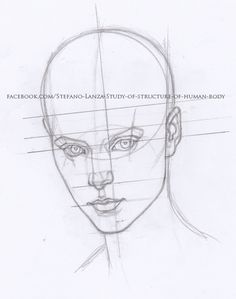 #head #draw #drawing #art #pencil #matita #anatomy #anatomia #disegno