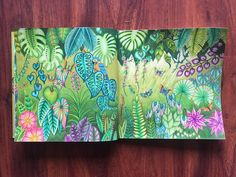 My jungle bathed in lovely soft natural light. #magicaljungle #johannabasford