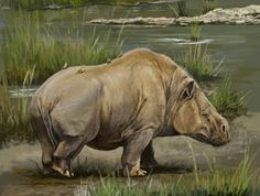 Extinct Animals, Prehistoric Creatures, Save Animals, Prehistory, Fauna, Jurassic Park, Animal Drawings, Mammals, Dinosaurs