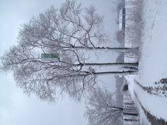 Stephen Estes' Door to Infinity - March Snow. Magical!
