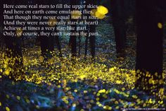 Fireflies in the Garden, by Robert Frost: Here come real stars to fill the upper skies, And here on earth come emulating flies, That though they never equal stars in size, (And they were never really stars at heart) Achieve at times a very star-like start. Only, of course, they can't sustain the part.