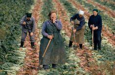 Mujeres de Alemania Oriental ríen en la década de 1970. Un estudio reveló que las personas que trabajan en la agricultura, la pesca, la silvicultura o son más felices.