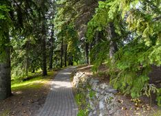 Riley Park Calgary Alberta Canadian Nature, Calgary, Sidewalk, Country Roads, Landscape, Park, Scenery, Side Walkway, Walkway