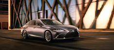 2019 Lexus ES the car looks cool Lexus Sedan, Lexus Suv, New Lexus, Lexus Lineup, Lexus Models, Peking, Bmw 5, First Drive, Sports Sedan