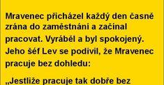 TORPEDA.cz - vtipné obrázky, vtipy a videa