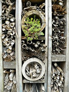 """Insect hotel""  it is not enough to pin this   create an insect house - this spring"