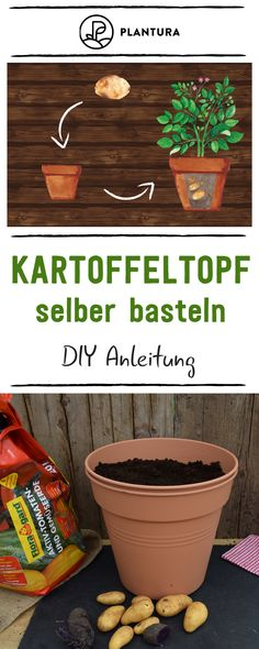 Plantura - nachhaltiges Gärtnern für alle Make potato pot yourself - DIY instructions: Potatoes can also be grown in the apartment or on the balcony - namely in the potato pot. You can find out how to