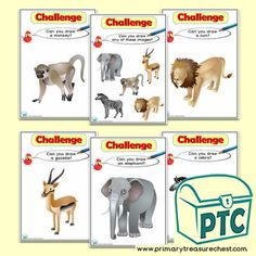 African Animal themed resources for the classroom Drawing Challenge, Art Challenge, African Animals, African Safari, Teaching Activities, Teaching Ideas, Numicon, Classroom Banner, Drawing Programs