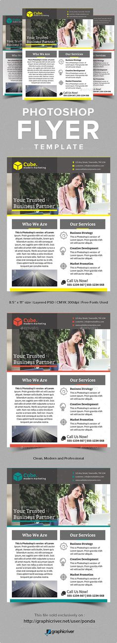 Web Hosting Flyer Template Flyer Template, Template And Fonts   Web Flyer  Template