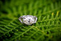 Celebrity Wedding: Empire Actress Ties The Knot - MODwedding engagement ring.