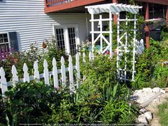 Creative Country Mom's Garden: At The Picket Fence...