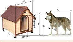 Какими размерами должна быть собачья будка?
