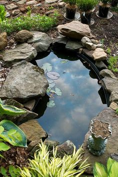 Small Backyard Ponds, Ponds For Small Gardens, Outdoor Ponds, Small Ponds, Outdoor Fountains, Water Gardens, Backyard Ideas, Outdoor Gardens, Backyard Waterfalls