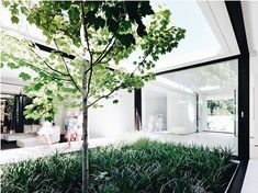 Yuille, McKimm Developments, The Local Project, Australian Architect and Design Australian Architecture, Interior Architecture, Melbourne Architecture, Brick Pathway, Internal Courtyard, Moroccan Lanterns, Backyard Lighting, Inspired Homes, Atrium