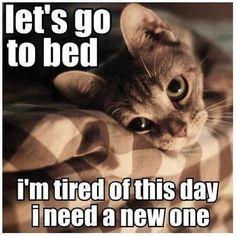 Natti natti folks!!  Nya tag imorrn (håll tummarna för bra väder)! Längtar efter benpasset på Tullbro efter jobbet. Lår o rumpa ska slaktas i jakt på nya PB!!  #fuckthis #bedtime #sweetdreams #godnatt #whereismycatwhenineedhim #goodnight #letsgotobed #tired #Padgram