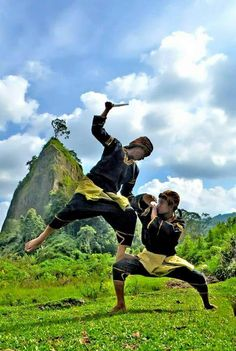 There are over 1000 types of silat in Malaysia Action Pose Reference, Pose Reference Photo, Action Poses, Fight Techniques, Martial Arts Techniques, Minangkabau, Martial Arts Weapons, Art Of Fighting, Anatomy Poses