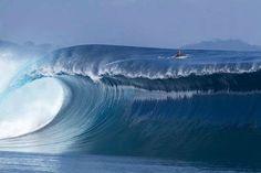 Alles ist aus dem Wasser entstanden, alles wird durch das Wasser erhalten. Ozean, gönn uns Dein ewiges Walten. (J.W. v. Goethe)