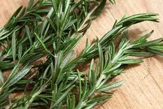 Rosemary grows in the wild all over Spanish mountains in the spring
