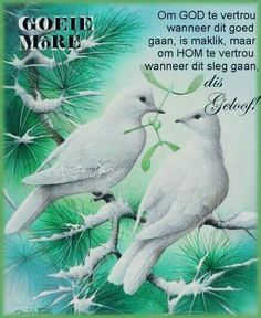 Good Night sister,hope you had a wonderful day,God bless,xxx ❤❤❤✨✨✨ Good Night Sister, Number Drawing, Goeie Nag, Goeie More, White Doves, Good Morning Wishes, 5d Diamond Painting, Drawing Skills, Easy Paintings