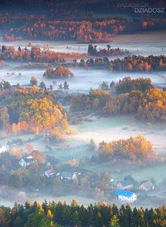 Golden Autumn in Poland by Wojciech Dziadosz
