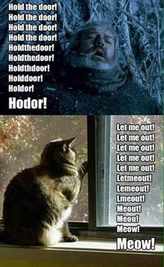 Hold the door, don't let the cat out!