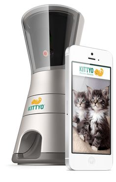 """Introducing """"Kittyo"""" – a revolutionary new product that lets you watch, speak to, play with, and record your cat when you're away. You can even dispensetreats!"""