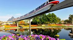 Epcot Tourism, Florida - Next Trip Tourism