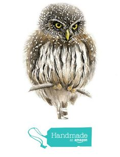 Pygmy Owl Watercolor Giclee Print from Mira Guerquin Art…