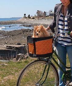 Look what I found on #zulily! Skybox Pet Bike Basket #zulilyfinds