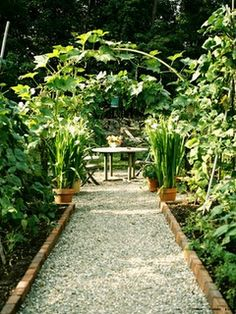 a simple gravel pathway ...  could use wine bottle for the edging ...  just gorgeous.