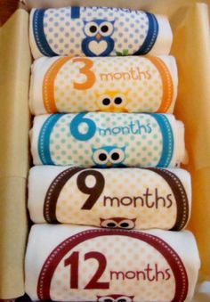 Set of 5 Month 2 Month Beautiful Owl Baby Onesies, Perfect Baby Shower Gift, Comes wrapped in Gift Wrap Paper via Etsy
