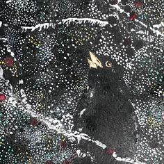 Instagram Site, Blackbird, Bird Art, Prints For Sale, Gouache, Night Time, Close Up, Layering, Woodland