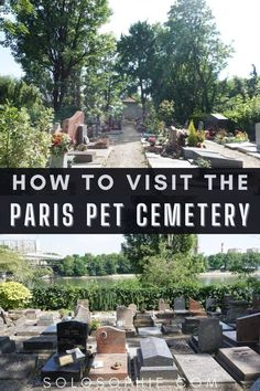 how to visit the Paris pet cemetery/ Cimetière des chiens paris france day trip